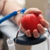 21 января 2017 г. состоится акция по сдаче крови «Мы с тобой одной крови»
